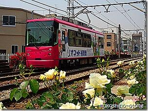 Photo2970